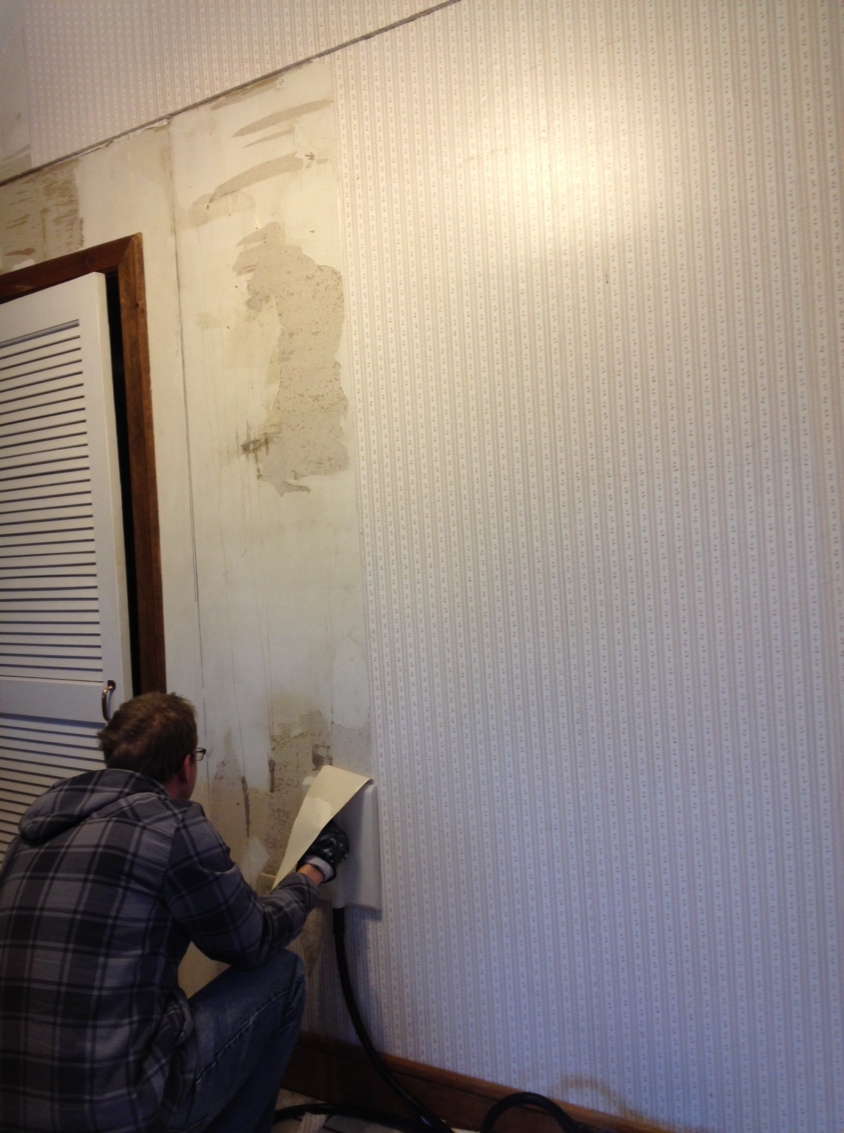 Steaming wallpaper on the kitchen wall. It was adhered to raw drywall so it's coming off a little rougher than we'd hoped.